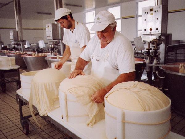 дегустация сыра в Италии